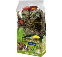 JR Farm Grainless Plus salie en paardenbloem 100 gram