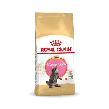 Royal Canin Maine Coon Kitten 36 10 kg