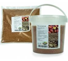 Palmnoot Gedroogd in emmer 500 gram