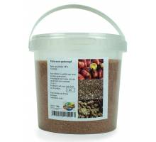 Palmnoot Gedroogd 1kg