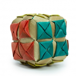 Back Zoo Nature Coloured Party Cube