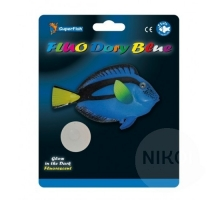 SuperFish Fluo Dory Blauw