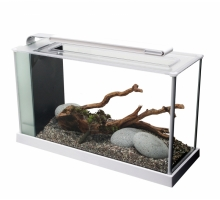 Fluval SPEC Wit - aquariums