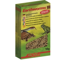 Lucky Reptile Earthworms 10 gram