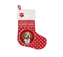 Kerstsok Beagle