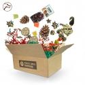 Back Zoo Nature Papegieten Christmas Box