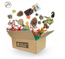 Back Zoo Nature Papegieten Christmas Box