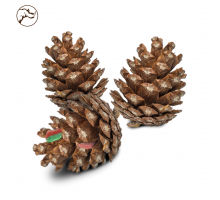 Back Zoo Nature Fill Your Own Pine Cone 3 stuks