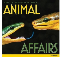 Animal Affairs
