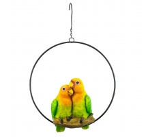 Paradise Bird Lovebirds in ring