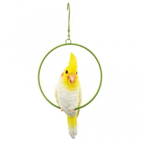 Paradise Bird Valkparkiet in Ring