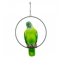 Paradise Bird Amazone in Ring