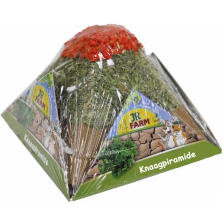 JR Farm Knaagpiramide