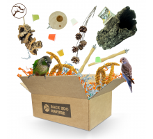Back Zoo Nature Fun Surprise Box for Parakeets