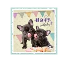 Studio Pets Happy Birthday French Kaart