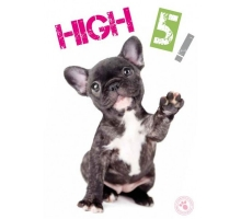 Studio Pets High Five French Kaart