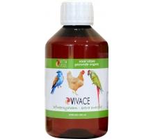 Vita Vogel Vivace 250 ml (Afweer & Energyboost)