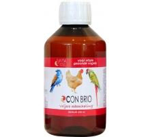 Vita Vogel Con Brio 250 ml (Vrijere Ademhaling)