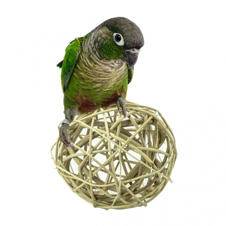 Back Zoo Nature Treat Ball Giant