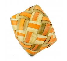 Back Zoo Nature Coloured Woven Cube Large