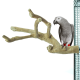 Zitstokken Vogel -Back Zoo Nature Java Multi Perch Premium Large