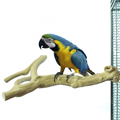 Zitstokken Vogel -Java Multi Perch Premium Extra Large