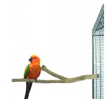 Zitstokken Vogel - Back Zoo Nature Duo perch teak medium