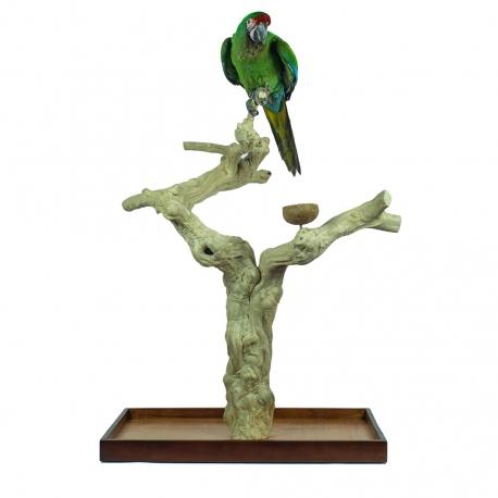 Back Zoo Nature Java Tree Playstand + Plateau Premium X-Large