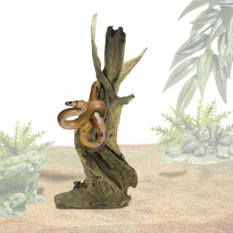 Teak Wortel Giant ca. 70-140 cm