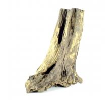 Thai Tree Trunk medium 30-45cm