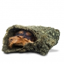 Back Zoo Nature Corky Tube Large Reptiel
