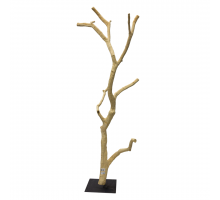 Back Zoo Nature Hardwood Fruit Tree A11