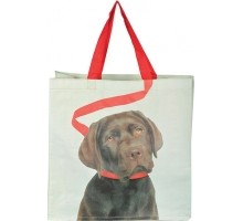 Avontuurlijke BIG Shopper Hond