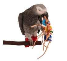 Zoo Max Rollicking Foot Toy for Parrots