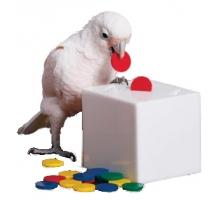 Zoo-Max Teach Box and Bank Medium