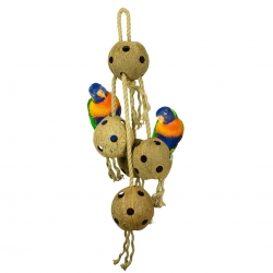 Back Zoo Nature Coconut Chain XL