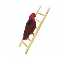 Back Zoo Nature Java Ladder 60 cm