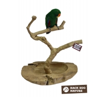 Back Zoo Nature Java Tree PlayBowlStand