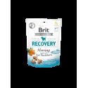 Brit Functional Snack Recovery Herring 150 gr