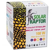 UV Mercury Vapor Lamp 100W