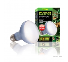 Exo Terra Daylight Basking Spot Lamp 75 watt