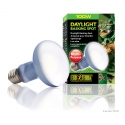 Exo Terra Daylight Basking Spot Lamp 100 watt