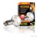 Exo Terra Intense Basking Spot Lamp 50 watt