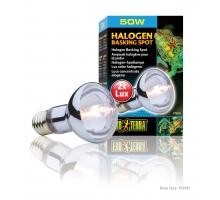 Exo Terra Halogen Basking Spot 50 watt