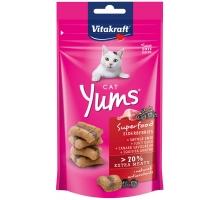 Vitakraft Kat Cat Yums Superfood Vlierbessen 40 gram