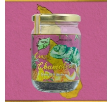 Travel Tea Crazy Chameleon 250 ml
