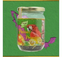 Travel Tea Parrot Paradise 250 ml