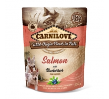Carnilove Pouch Salmon with Blueberries for Puppies 300 gram