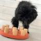 Nina Ottosson Dog Smart Composite