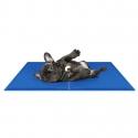 Koelmat voor Honden 30 x 40 cm